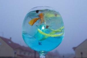 Gin Azulado