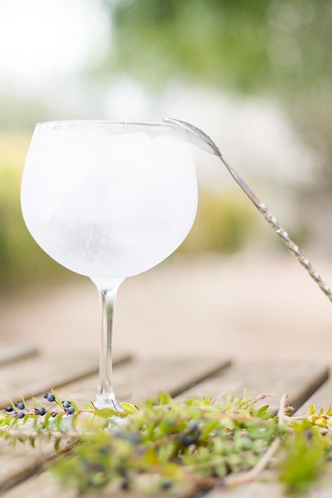 Gin Monica2